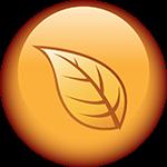 Логото за Група на Организации